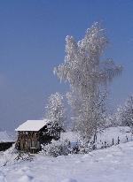 Peisaj de iarnĂŁ
