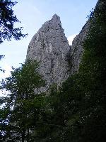 ColĂžul Viperei