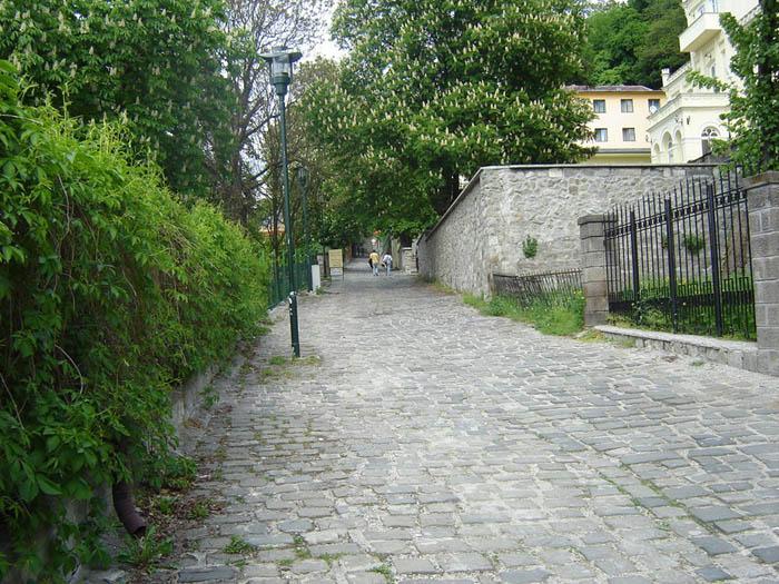 /Visegrad/strada.jpg