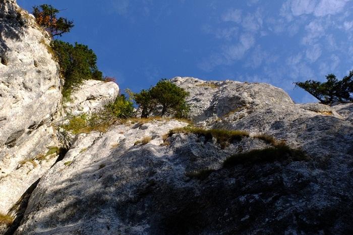 /Piatra_Mare_2014/12.jpg