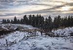 Iarna pe ulițĂŁ