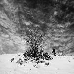Winter hiking in black and white