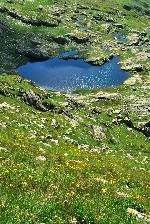 Lacutul din Valea Rea