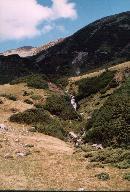 caborand din muntii rodnei,vara 2003