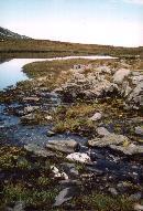 un lac minunat din muntii rodnei ,vara 2003