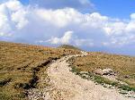 Vf. Nedeia (2130m) din Curmatura Beleoaia