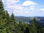 O parte din carstul din Valea Cernei. Peisaj din Curmatura Plesii (cca 1650m)