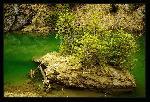 Insula dintre smaralde