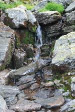 Un mic izvor aproape de Turnul Paltinei