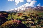 M. Demavend (Iran) - vedere de langa Gosfand Sara (3040 m.) spre varf