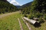 La capatul drumului, pe Valea Topologului...