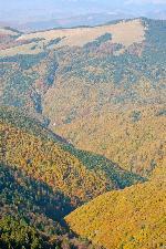 Spre Valea lui Coman