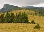 Priveliste din Poiana Pietrele Rosii