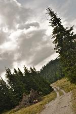 Pe Dealul Bisericuța