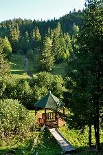 Borviz pe valea Pârâului Loc / Lok.