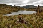 Parque de Cajas - Laguna Osohuaycu