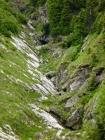 Alb și negru (afluent al Pârâului Gaura)