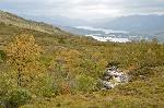Vedere spre Loch Linnhe