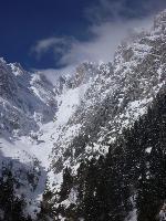 Valea Bucșoiului