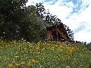 Casuta din povesti... Cabana Clubului Alpin Roman din Sugau