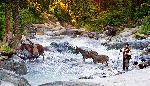 Valea Sambetei dupa inundatii