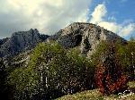 Peștera Coșul Boului