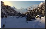 Splendoare de iarna