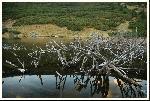 lacul iezer din calimani, sau iezerul retitis in alte locuri