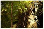 pe valea lomasitei, formatiune stancoasa, care da impresia de fatza care se uita la ciot, privit din unghiu asta :)