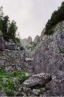 Valea Galbinelelor
